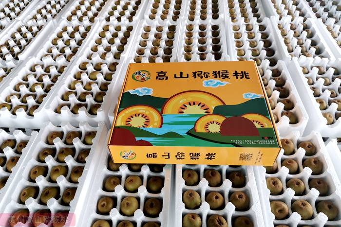 江苏南京猕猴桃价格