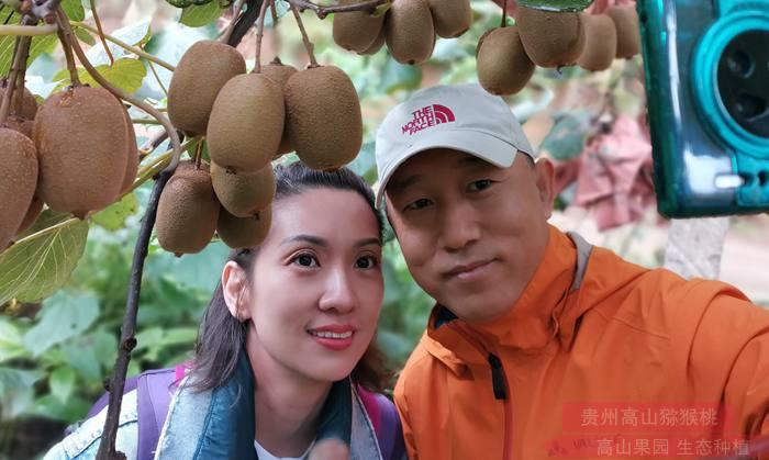 红心猕猴桃苗种植方法以及防止病虫害