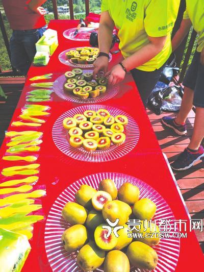 贵州六盘水市水城红心猕猴桃产业网络营销方案