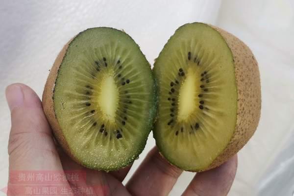 翠玉猕猴桃最甜更好吃