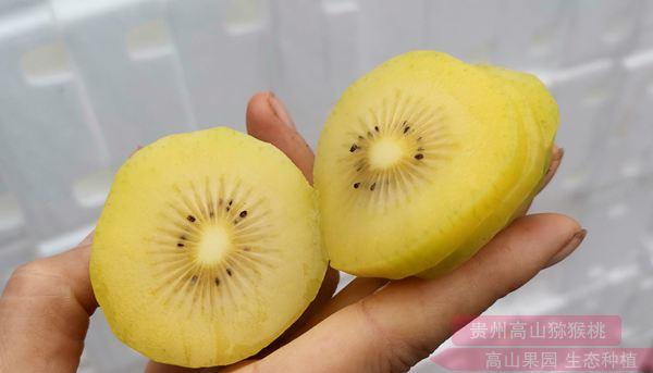 新西兰奇异果和本土猕猴桃的区别